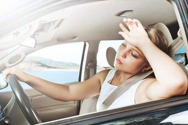Жара в машине: правила безопасности